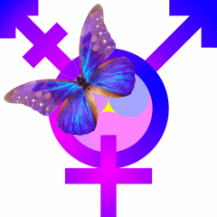 another_yin-yang-yuan_biggestwholebutterfly_transgender-symbol